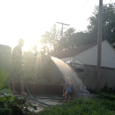evening water