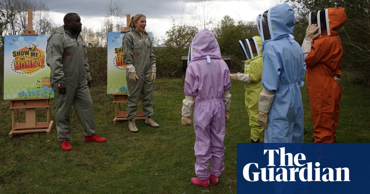 Show Me the Honey: amateur beekeepers to compete in BBC show
