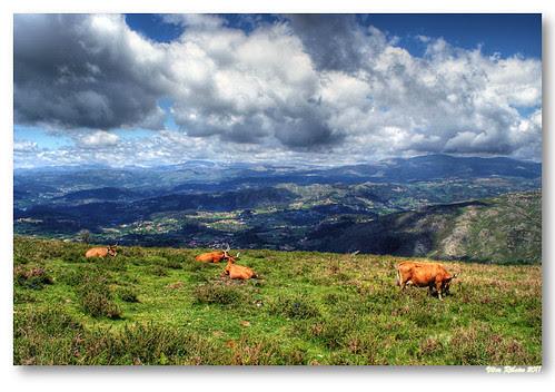 Monte das Lameiras #4 by VRfoto