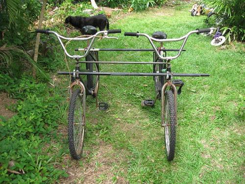 4 wheeled cruising