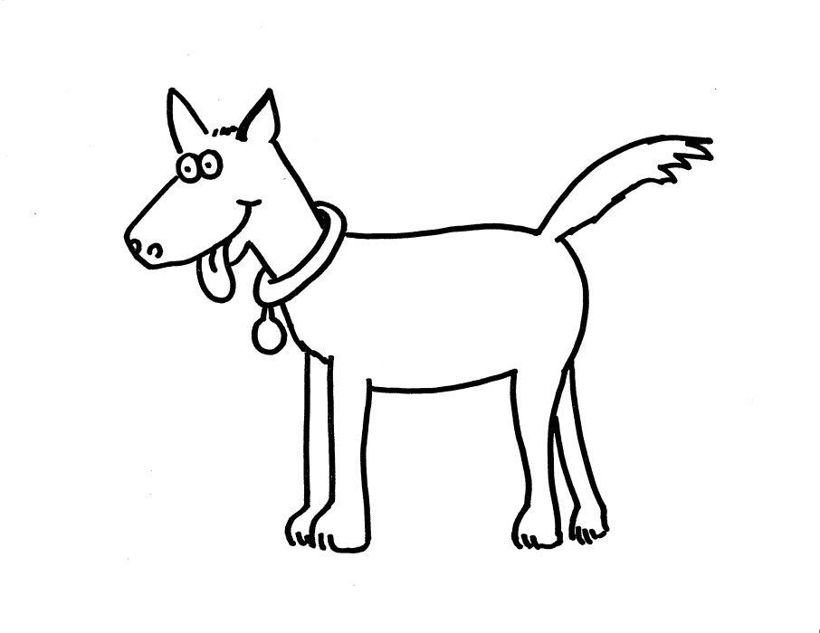 Cevap Hayvanlar Boyama Sayfası Hayvanlar Alemi Boyama Resimleri