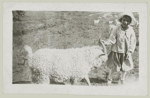 Child and ram