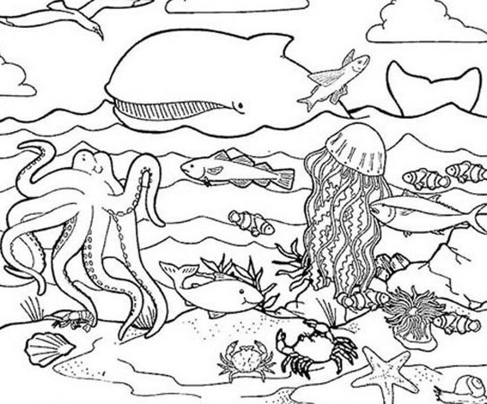 Coloring Pages Of Sea Creatures