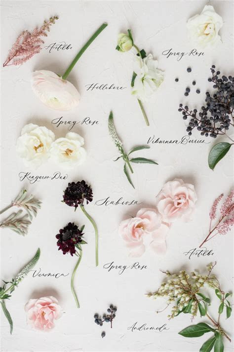 Types of Wedding Flowers by Colour   ElegantWedding.ca