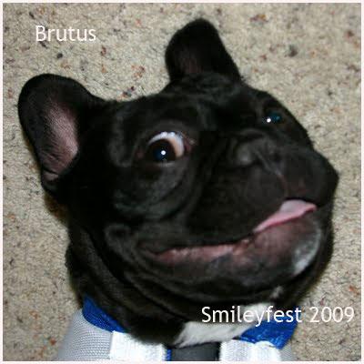 07-Brutus---2