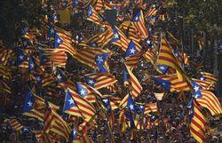 Manifestation pour l'indépendance en Catalogne en 2014