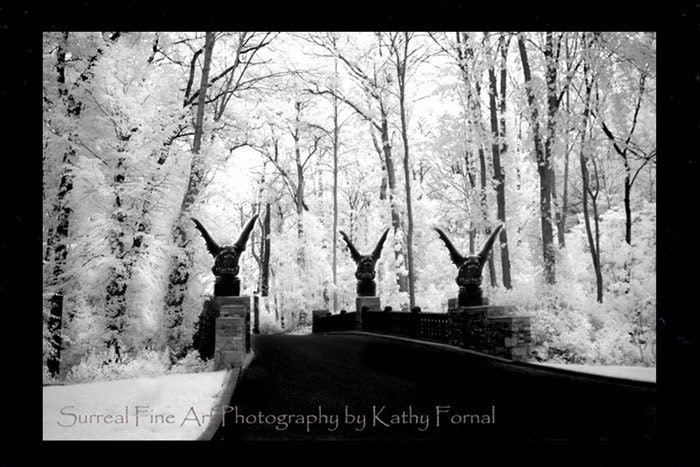 "Gothic Photography - Surreal Gothic Nature Scene, Gargoyles, Surreal Landscape, Black and White Fine Art Photograph 8"" x 12"""