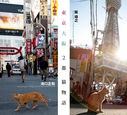 写真集「東京・大阪2都猫物語」