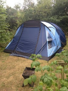 Camping in Suffolk