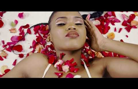 Download or Watch(Official Video) King bibo ft Bright – Chekecha