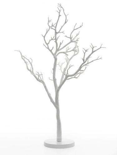 wedding manzanita trees ebay