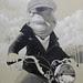 Biker_Frog_08