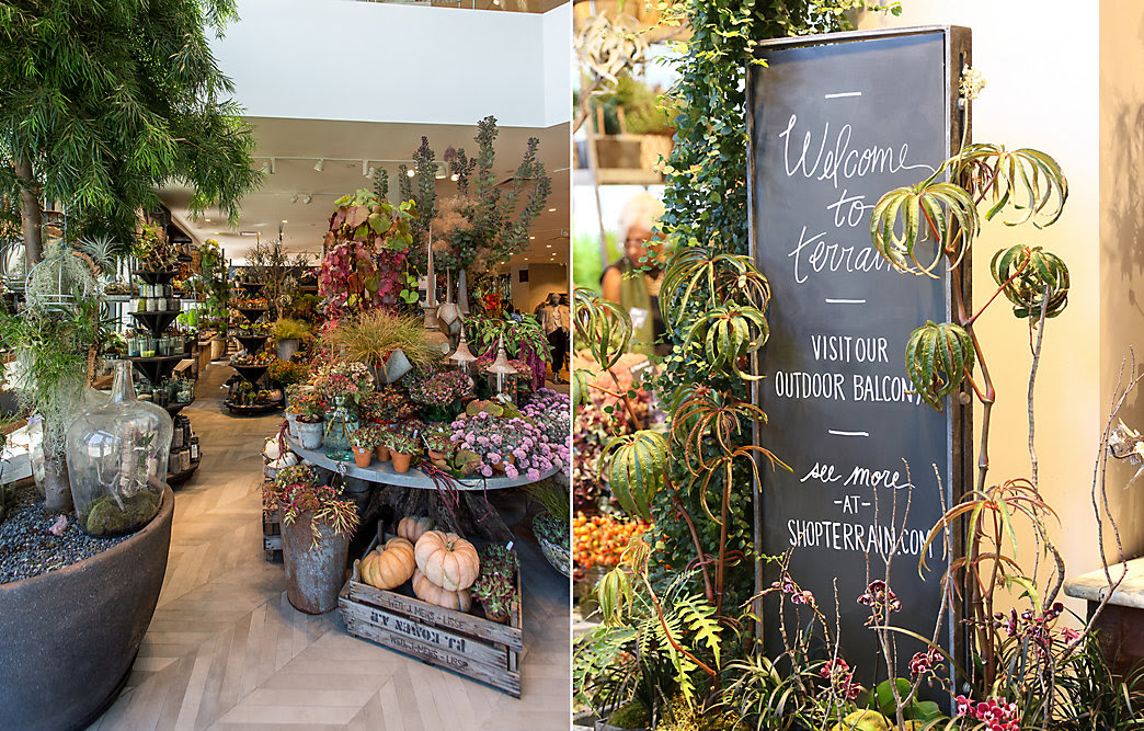 Image result for anthropologie walnut creek grand opening