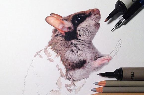 質感がスゴすぎる動物たちのハイパーリアル画に使用した画材を添えて