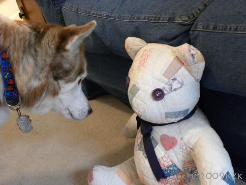 DSCN2271 Zim and Bear