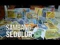 Kartunis Semarang riwayatmu kini