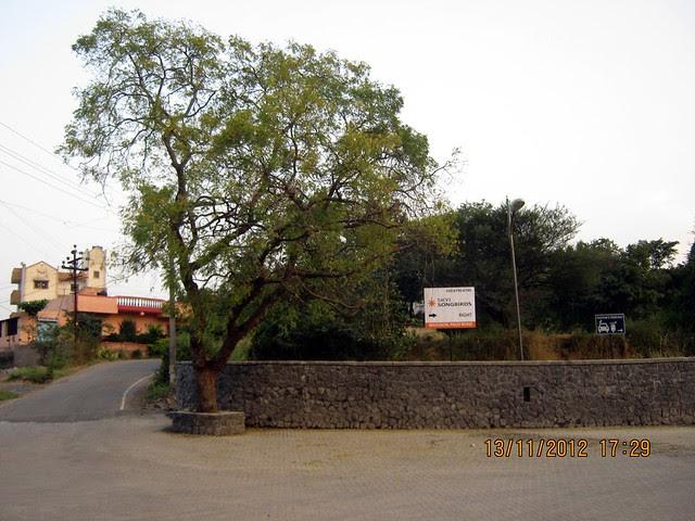 Visit SKYi Songbirds at Bhugaon, on Paud Road, Pune 411042