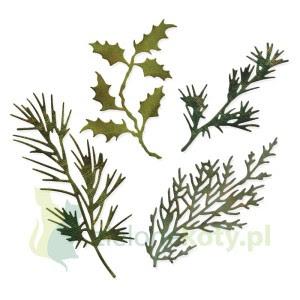 http://zielonekoty.pl/pl/p/Wykrojnik-Sizzix-Thinlits-Holiday-Greens-galazki-swierku-sosny/246