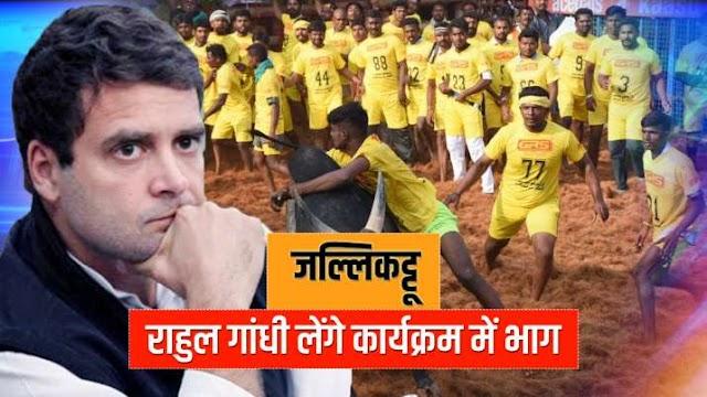 राहुल गांधी लेंगे जल्लिकट्टू कार्यक्रम में भाग, 14 जनवरी को जाएंगे मदुरै: सूत्र