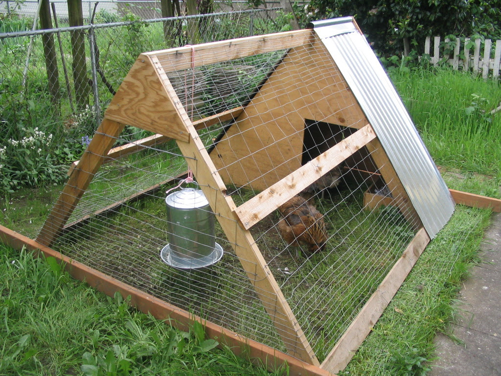 Free Chicken Tractor Plans Pdf Plans DIY Free Download Box ...