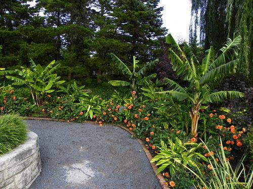 Chicago Botanic Garden (13)