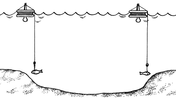 Ловля судака кружками над бровками