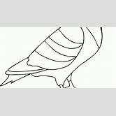 Mewarnai Gambar Burung Merpati Best Free
