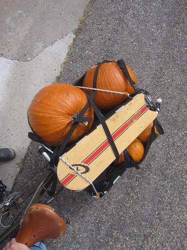 Pumpkins bound for home