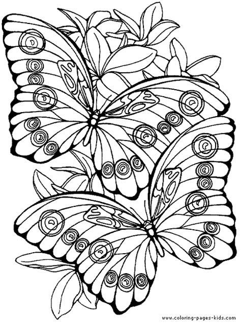 fantasy pages  adult coloring butterfly color page