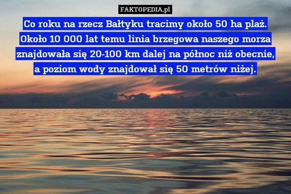 Co roku na rzecz Bałtyku tracimy – Co roku na rzecz Bałtyku tracimy około 50 ha plaż. Około 10 000 lat temu linia brzegowa naszego morza znajdowała się 20-100 km dalej na północ niż obecnie, a poziom wody znajdował się 50 metrów niżej.