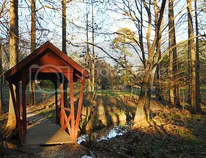 Donald E. Davis Arboretum