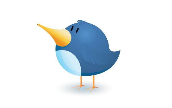 <b>twitter </b>
