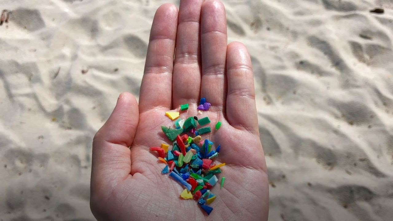 Ultra-fine plastic particles, less than five millimeters in length, are called microplastics. Image credit: Oceana