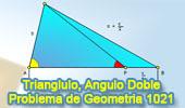 Problema de Geometría 1021 (English ESL): Triangulo, Relaciones-métricas, Angulo Doble