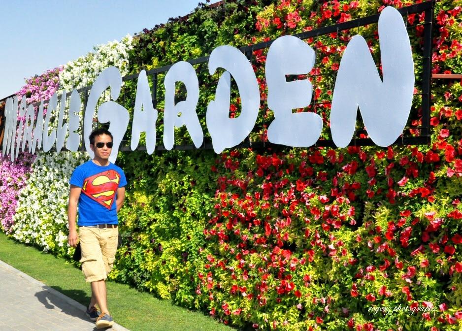 A Flower Garden In The Desert | Rogerzki's Blog