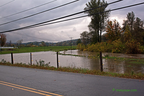 Barton River Flooding    05.jpg