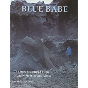 Blue Babe The Story Of A Steppe Bison Mummy From Ice Age Alaska