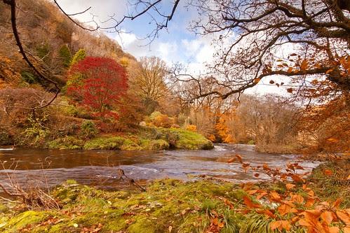 Downstream Autumn