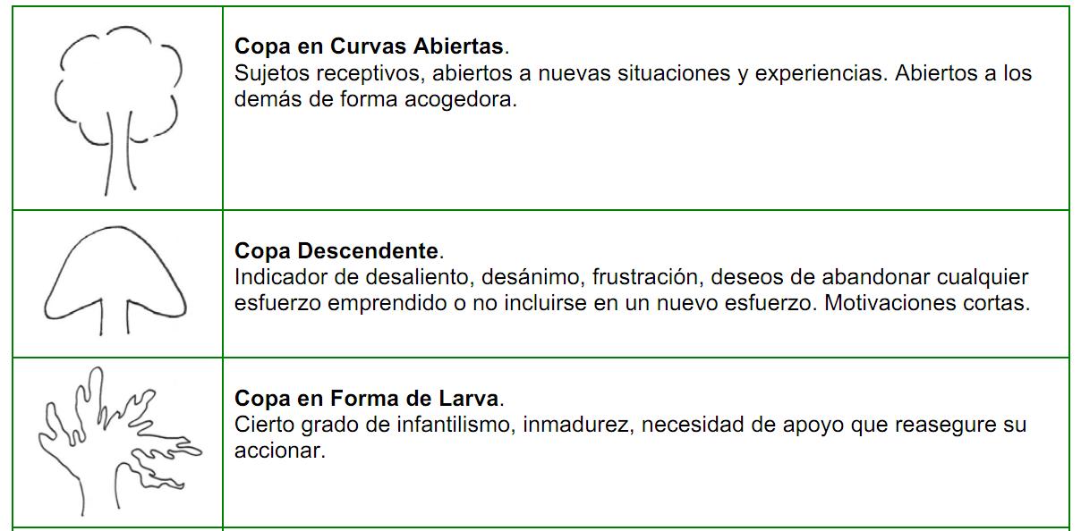 arboles_tronco20