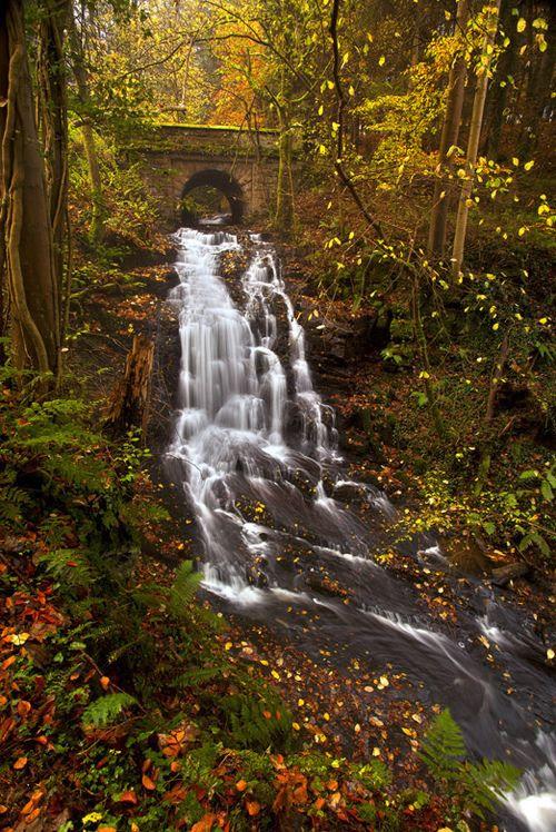 Stone Bridge Waterfall, Clyde Valley, Scotland