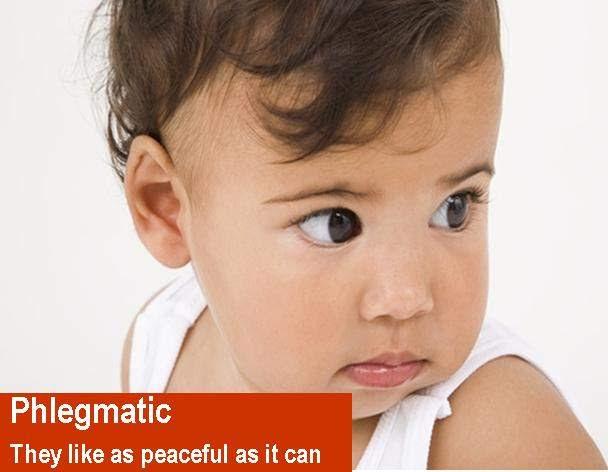 phlegmatis