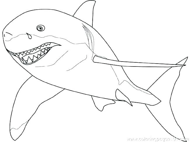 Mako Shark Coloring Page at GetColorings.com | Free ...
