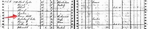 1865 RI State Census Crop by midgefrazel