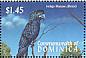 Lear's Macaw Anodorhynchus leari