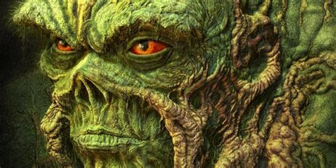 swamp  wallpaper gallery