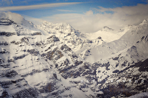 swiss alps from the jungfraujoch