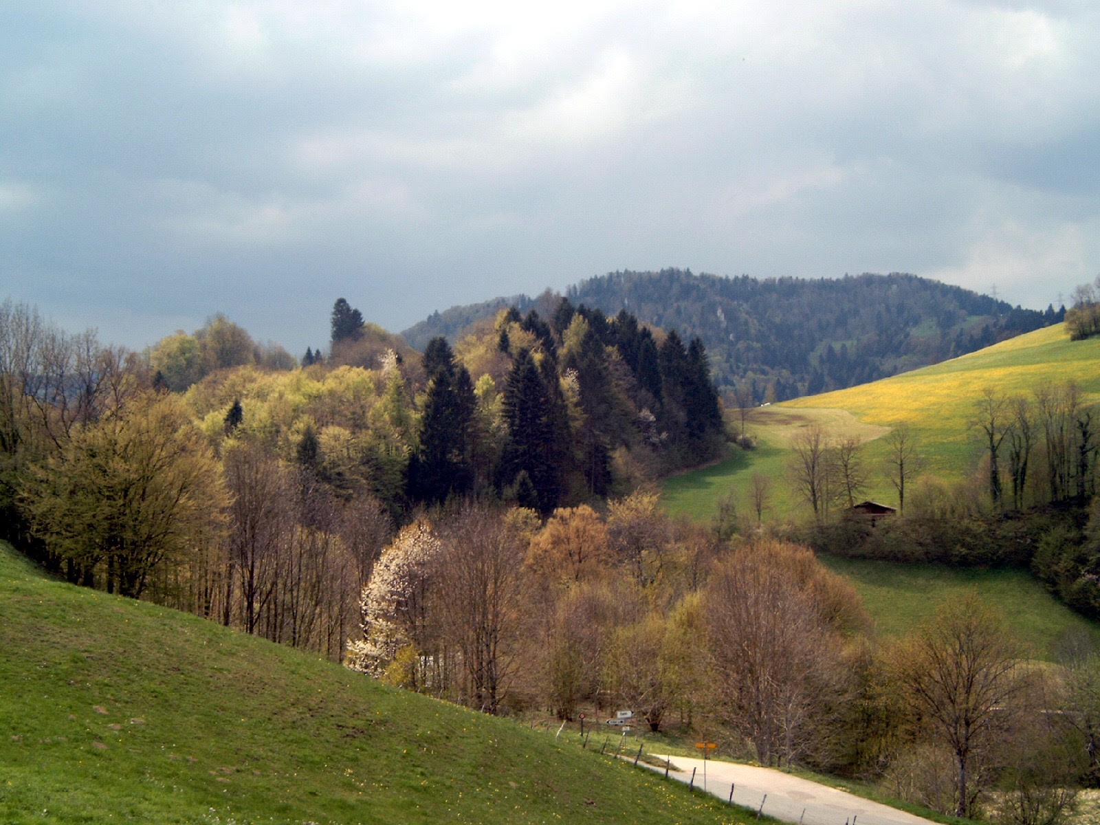http://upload.wikimedia.org/wikipedia/commons/e/ef/Montmelon%2C_Jura_in_spring.JPG
