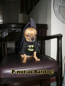 P-nut as Batdog!