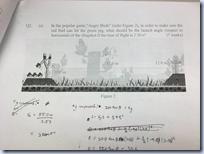 Angry Birds exam