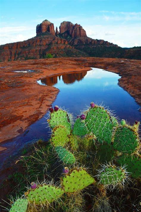 234 best Sedona Arizona images on Pinterest   Sedona